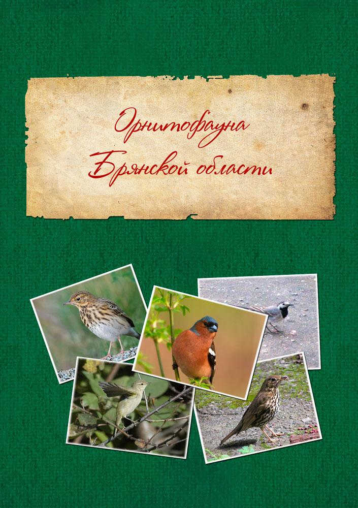 http://lyceum-lomonosov.ru/wp-content/uploads/2015/02/Обложка-фронтальная1.jpg