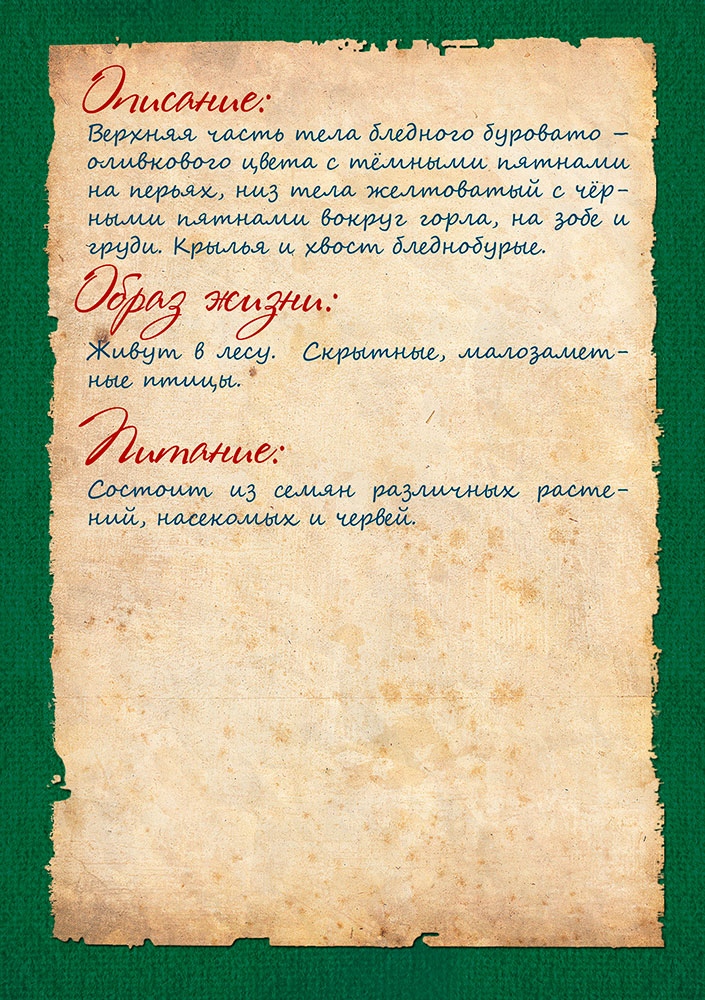 http://lyceum-lomonosov.ru/wp-content/uploads/2015/02/Страница-16.jpg